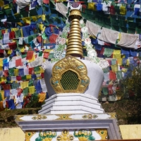 stupaflags.web_