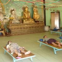 Patients&Buddhas copy